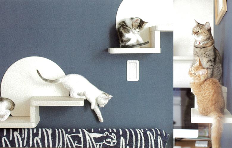 猫 遊び棚